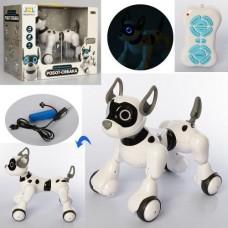Игровой Интерактивный Робот Собака на радиоуправлении, со световыми и звуковыми эффектами: сказки, песни, 28см