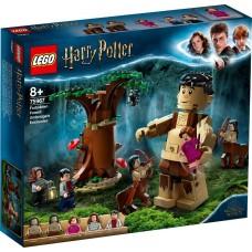 Lego Harry Potter Запретный лес: Грохх и Долорес Амбридж 75967