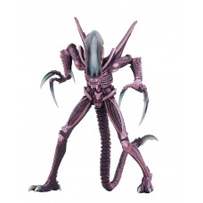 Фигурка Нека Чужой против Хищника Рейзор Клоу, 17 см - Aliens vs Predator, Razor Claw