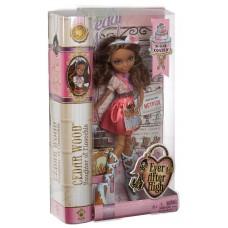Кукла из серии Эвер Афтер Хай Седар Вуд  Покрытые Сахаром (EAH Sugar Coated Cedar Wood)